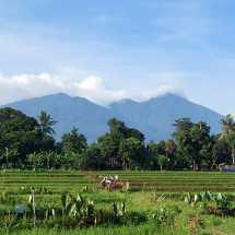 Kembangkan Wisata Mulyaharja, Pemkot Bogor Kucurkan Dana 2,8 Miliar