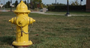 yellowfirehydrant