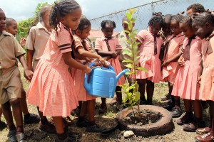 """Lawrence T. Gay Memorial students had fun in the garden today, creating new """"homes"""" for a number of fruit trees as they turned Arbor Day celebrations into an educational and learning experience."""
