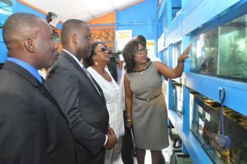 From left, Kevin Murrell, Donville Inniss and Mia Mottley looking on as NISE chief executive officer Kim Tudor expresses delight at some of the fish at KAMS.