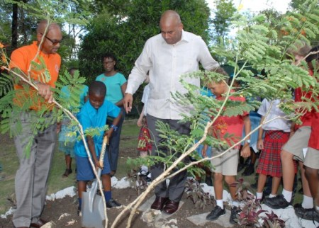 A St Lawrence Primary lad putting the finishing touches to a newly planted tree, as Paul Collymore, operations manager of Ocean Two Resort, looks on with Acting Prime Minister Richard Sealy.