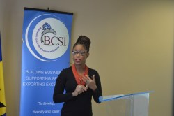 BCSI Executive  Director Lisa Cummins