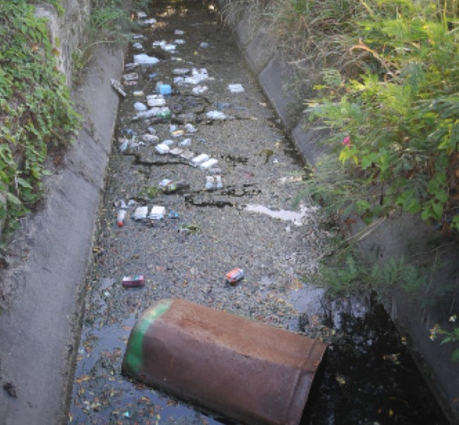 The filthy canal that has residents of Halls Road concerned about  ZIka.
