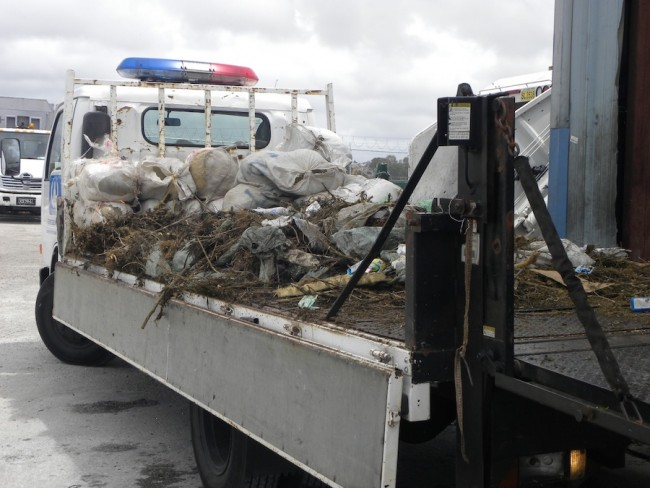 More than a ton of cannabis was transported to the incinerator.