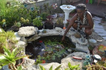 Gale Gooding admiring the pond her son Dwayne Gooding built on her property.