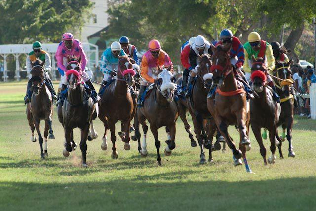 HorseXracingXonXXtodayXatXtheXGarrisonXSavannah