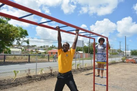 Alan Thompson and Anya Gage play on the monkey bars.