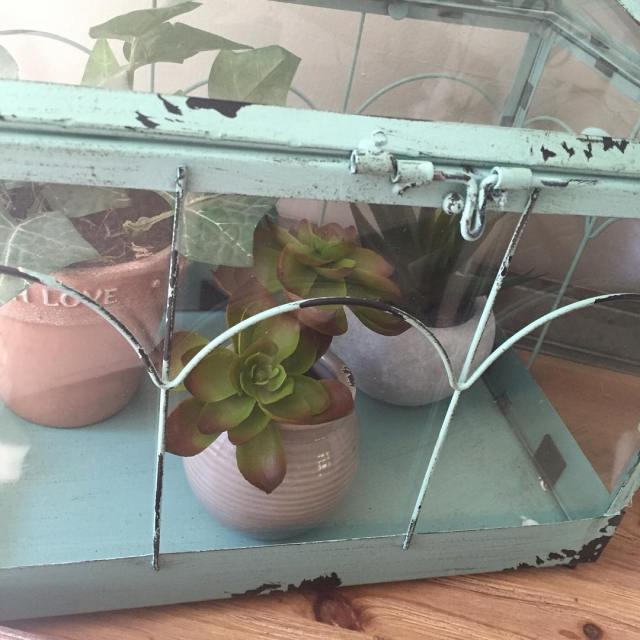 Love this little terrarium I found at Hobby Lobby tuesdaytealdecorhellip