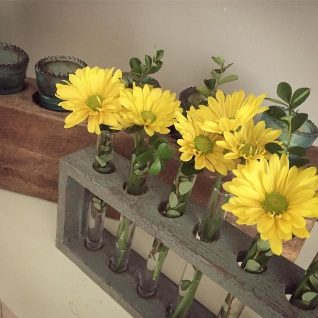 Love my little vintage test tube rack for fresh flowers!!hellip