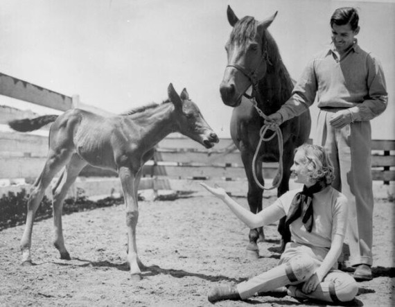 Gable and Lombard at their ranch