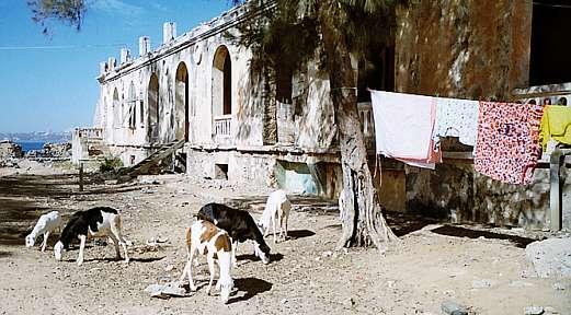 Obdachlosenwohnungen in den ehemaligen kolonialen Prunkbauten auf Gorée