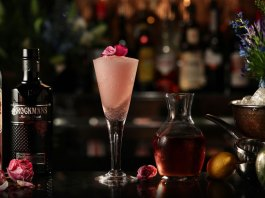 Brockmans Gin Frosé Cocktail Recipe