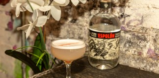 Espolòn Tequila Basic Beach Cocktail Recipe