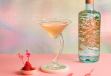Silent Pool Gin Flamingo Cocktail Recipe