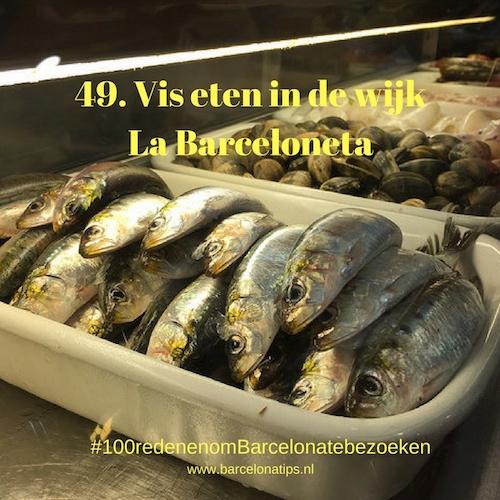 49-vis-eten-in-de-wijk-la-barceloneta