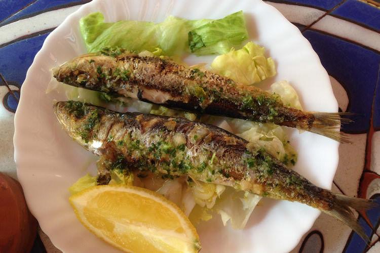 Tapas sardines Barcelona