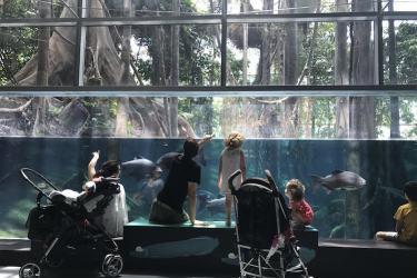 Barcelona met kinderen bezoeken