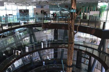 Trap in wetenschapsmuseum CosmoCaixa