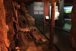 Museu D'Història de Catalunya 1