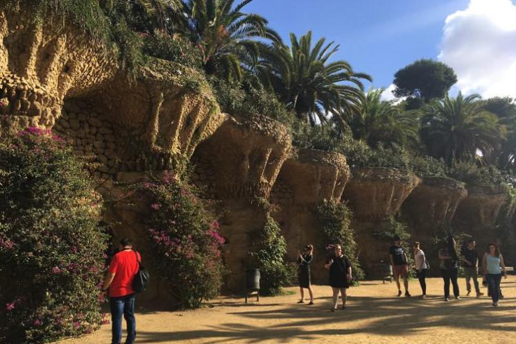 palmbomen in park guell man met rood t-shirt