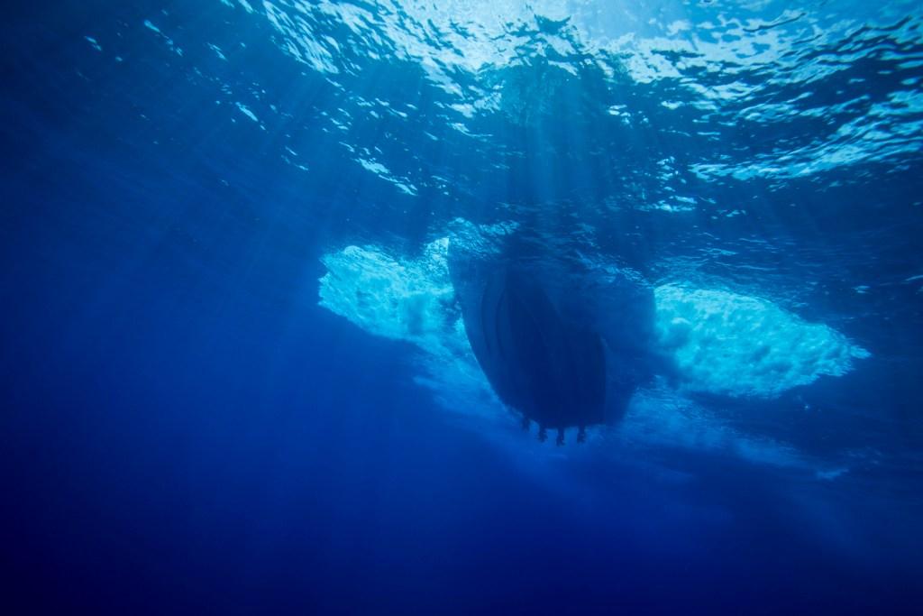 barche boston whaler 420 outrage