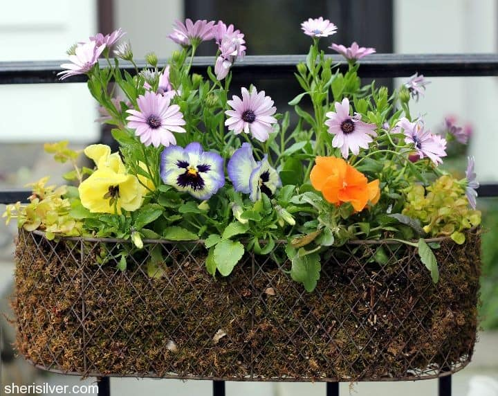 diy upcycle garden planter