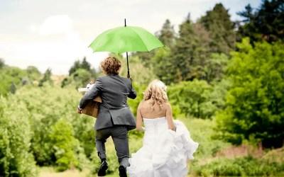 Best Wedding Registries That Will Save Guests Money