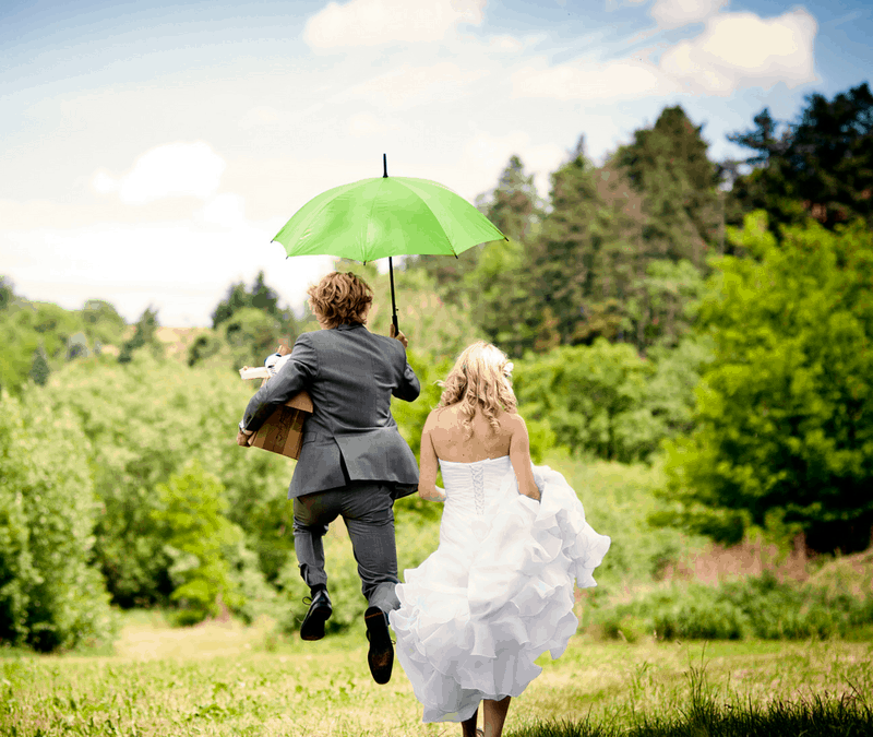 Best Wedding Registries That Will Save Guests Money