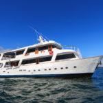 Aqua Galapagos Cruise
