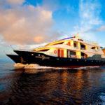 Ocean Spray Luxury Catamaran