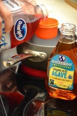 Agave Syrup and Diet Cranberry Juice_small