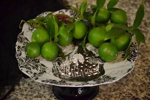 key-limes-from-our-tree_small