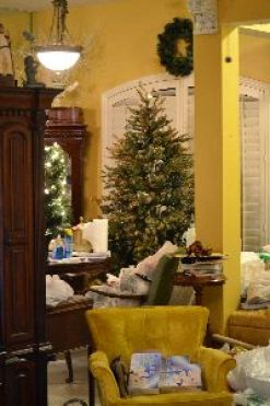 put up another tree_small