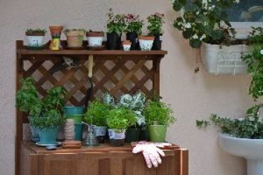 potting bench getting some use_small