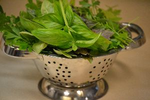 herbs for the pesto_small