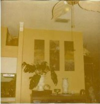 Living Room Orbs_small