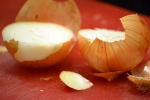 13-an-onion_small