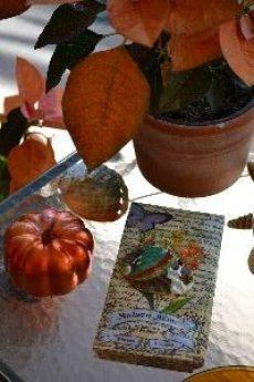 sea-shells-and-napkins-and-pumpkins_small