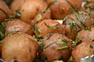 close up potatoes_small