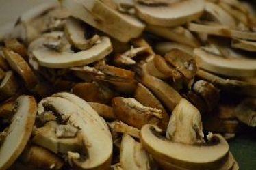 42 mushrooms_small