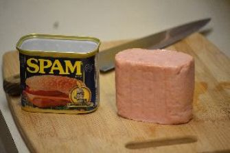 What SPAM looks like_small