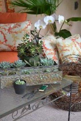 Succulent wreath beginnings_small