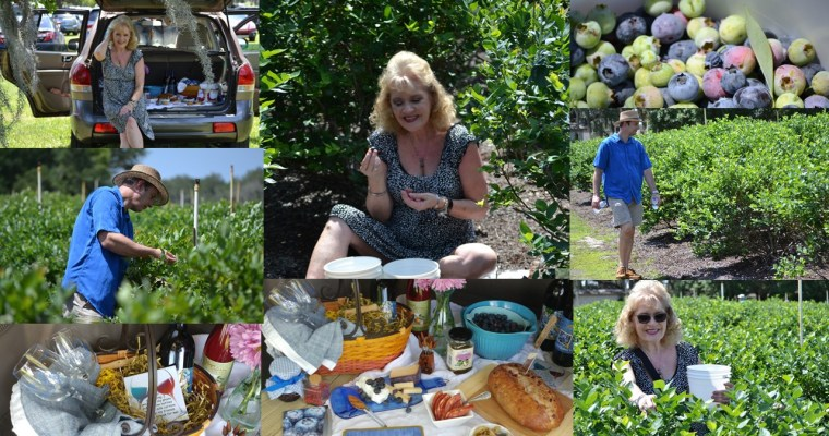 Blueberries, and the Blueberry Festival