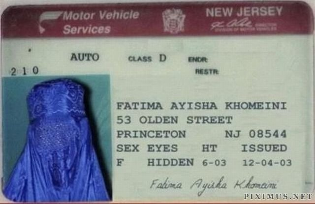 hilarious-drivers-licenses-5