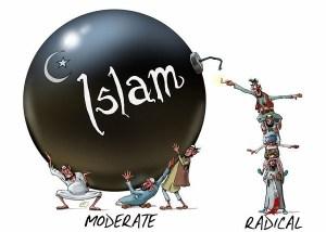 wishywashy_and_real_muslims-vi