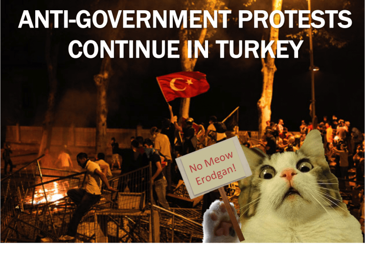 Current-Event-Cats-Protests-in-Turkey-e1381192727105