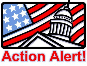 action-alert-300x228