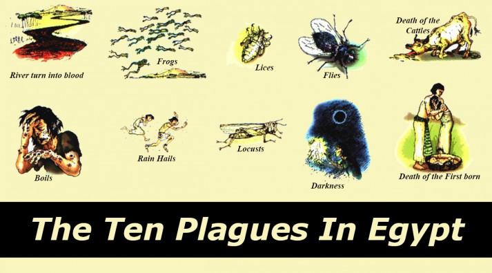 Ten-Plagues-e1397291179628