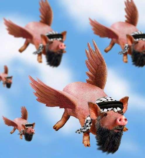 flying_pigs-vi