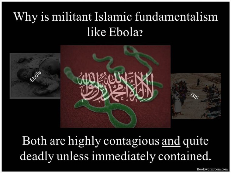 Why-is-militant-Islam-Like-Ebola